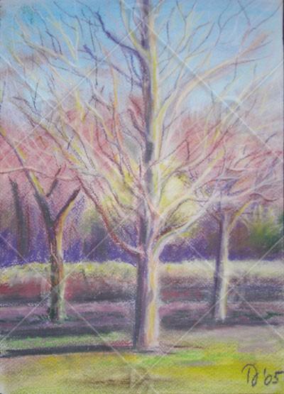 Három fa télutón