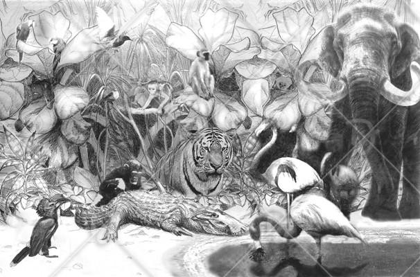Dzsungel-kollázs